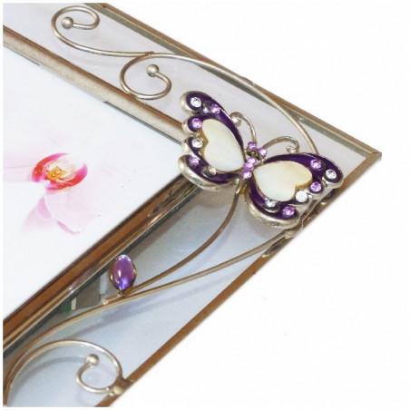 Album KD 46100-2 palma i kamienie